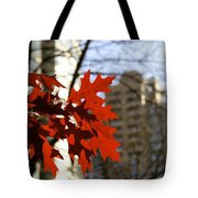 Fall In The City 2 Tote Bag