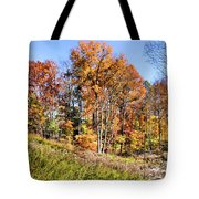 Fall In The Foothills Tote Bag