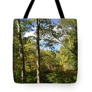 Fall In The Forest Tote Bag