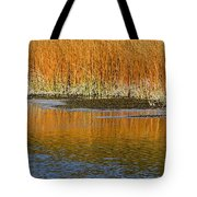 Fall In Yellowstone National Park Tote Bag