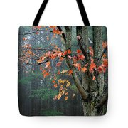Fall In Your Face Tote Bag