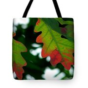 Fall L Eaves Tote Bag