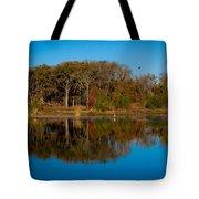 Fall Lake 4 Tote Bag