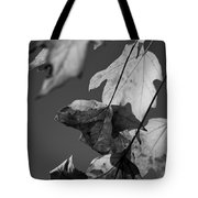 Fall Leaf Light Tote Bag