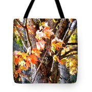 Fall Leaves 2 Tote Bag