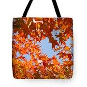 Fall Leaves Art Prints Autumn Red Orange Leaves Blue Sky Tote Bag