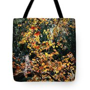 Fall Leaves Over Florida Pond Tote Bag
