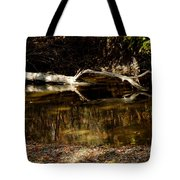 Fall Log Reflection Tote Bag
