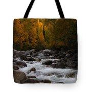 Fall River Tote Bag