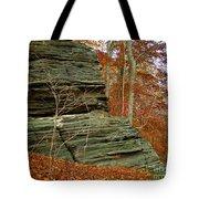 Fall Rock Tote Bag