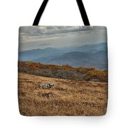 Fall Scene On Whitetop Mountain Va Tote Bag