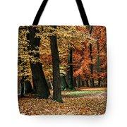 Fall Scenery Tote Bag