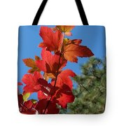Fall Snowball Branch Tote Bag