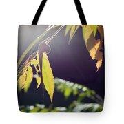 Fall Sumac Tote Bag