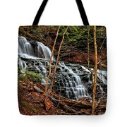 Fall Through The Woods Tote Bag