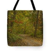 Fall Trail Scene 22 Tote Bag