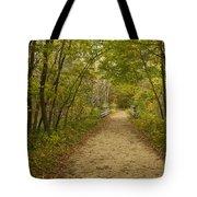 Fall Trail Scene 23 Tote Bag