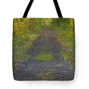 Fall Trail Scene 30  Tote Bag