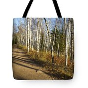 Fall Trail Scene 35 A Tote Bag