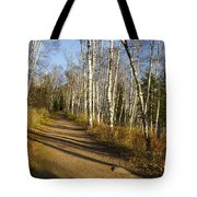 Fall Trail Scene 35 B Tote Bag