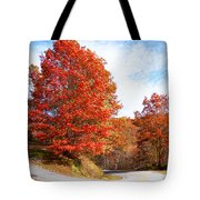 Fall Tree By The Road Tote Bag
