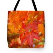 Fall Tree Leaves Art Prints Orange Red Autumn Tote Bag