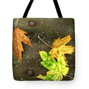Fall Trio Tote Bag