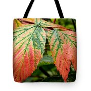 Fall Veins Tote Bag