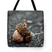 Fallen Acorn  Tote Bag
