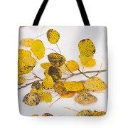 Fallen Autumn Aspen Leaves Tote Bag