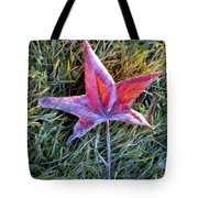 Fallen Autumn Leaf In The Grass During Morning Frost Tote Bag