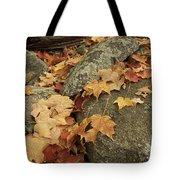 Fallen Autumn Sugar Maple Leaves Tote Bag