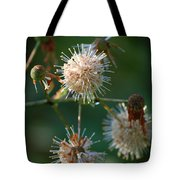 Fallen Flowers Tote Bag