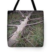 Fallen Pine Tree Tote Bag
