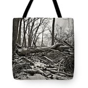 Fallen Soldiers Of The Forest Tote Bag