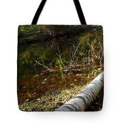 Fallen Tree Path Tote Bag