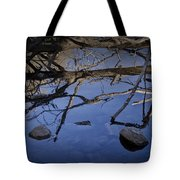 Fallen Tree Trunk With Reflections On The Muskegon Rive Tote Bag