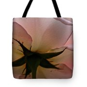 Falling Back In Love Tote Bag