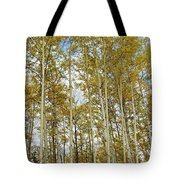 Falling For The Birch And Aspens Tote Bag