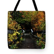 Falling Step Tote Bag