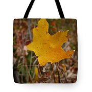 Falling To Earth Tote Bag