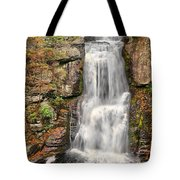 Falls At Bushkill Tote Bag
