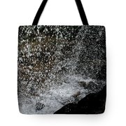 Fall's Backside Tote Bag