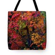 Falls Fiery Rainbow Tote Bag