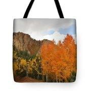 Fall's Glory Tote Bag