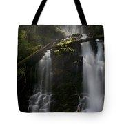 Falls Golden Light Tote Bag