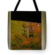 Fall's Reflective Moment Tote Bag