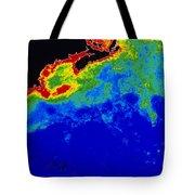False Col Satellite Image Tote Bag by Dr. Gene Feldman, NASA Goddard Space Flight Center