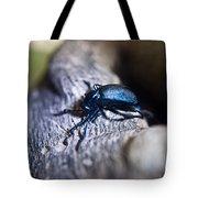 False Darkling Beetle 30 Tote Bag