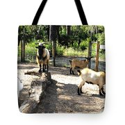Family At Landscape Creations  Tote Bag